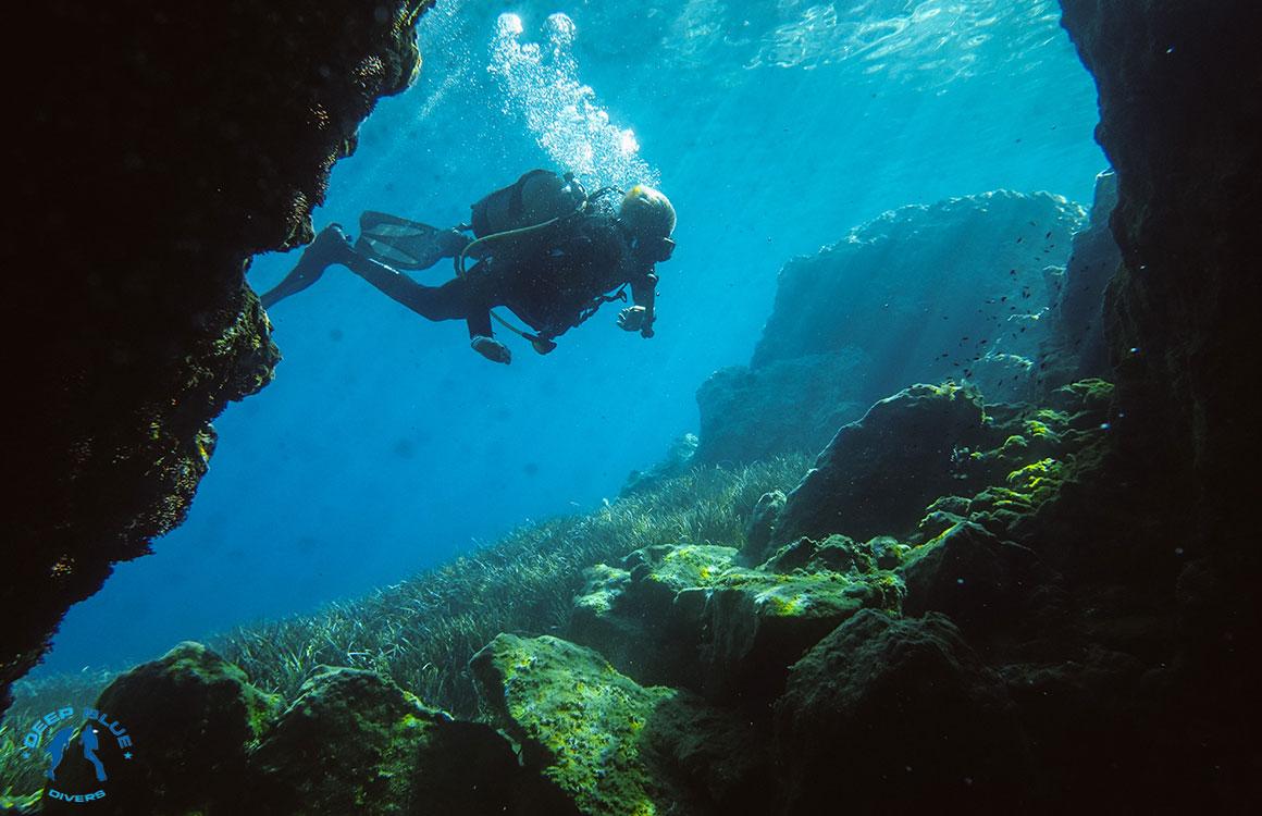 Arches deep blue divers - Dive deep blue ...